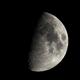 Moon,                                Palmito