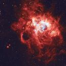 NGC 604,                                Steven Marx