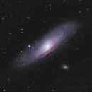 M 31 in heavy light pollution,                                mihai