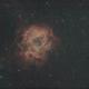 Rosette Nebula,                                Craig Bobchin