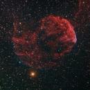 The Jellyfish Nebula - IC443,                                Steven E Labkoff