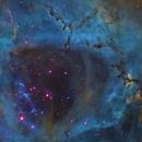 Rosette Nebula from Telescope Live,                                Mauricio Christiano de Souza