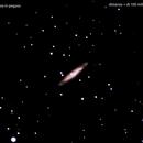 ngc7817 galassia in pegaso                              distanza superiore a 100 milioni  A.L.,                                Carlo Colombo