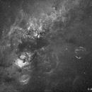 Cygnus Constellation - Halpha,                                Awni Hafedh
