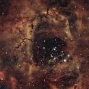 The Rosette Nebula,                                G. Caleb Sexton