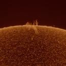 Solar filament and prominence,                                Robert Schumann