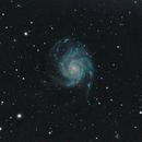 M101,                                DiiMaxx
