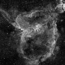 IC1805 HA,                                Vince