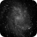M33 - the pin in the wheel,                                Tom Gray