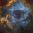 The Rosette Nebula - NGC 2237,                                Wissam Ayoub