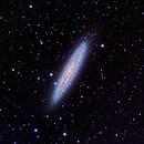 NGC 253 Sculptor Galaxy,                                David Nguyen