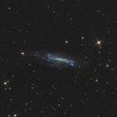The Galaxy NGC 4236 / C3,                                Marc Schuh