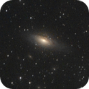 NGC 7331 and Stephan's Quintet,                                Máximo Bustamante