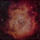 Rosette Nebula,                                jhanson
