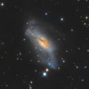 NGC 2146 Crop,                                Brice