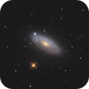 NGC 2841 / Tiger's Eye Galaxy,                                Chris Sullivan