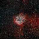 Bicolor Image of the Rosette Nebula,                                Kevin Dixon