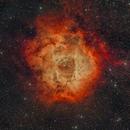 Rosette Nebula 2021.01.14,                                koichi