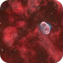 The Crescent Nebula (NGC 6888) and The Soap Bubble Nebula in Cygnus,                                Trần Hạ