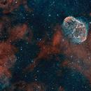 Crescent Nebula (NGC6888) and Soap Bubble Nebula,                                Luca Marinelli