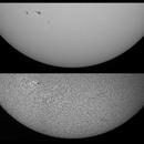 Sun in Ha and White Light - June 28, 2021 - AR2835-36,                                JDJ