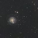 NGC3344 in Leo minor,                                Yannick Juillet