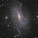 NGC 925,                                Frank Colosimo