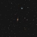 NGC7814 Little Sombrero,                                Jammie Thouin