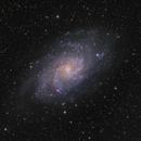 M33 Triangulum Galaxy,                                Fernando Huet