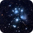 m45,                                Dave59