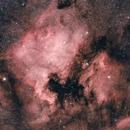 NGC 7000 and IC5070,                                Scotty Bishop