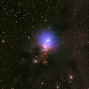 NGC 1333,                                Michael Caligiuri