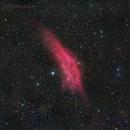 NGC1499 wide field,                                David Feng