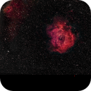 Rosette Nebula,                                Jeffrey Horne