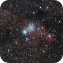 Christmas in March ? - A wide-field view of NGC 2264,                                BrettWaller