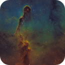 Elephant's Trunk nebula within IC1396,                                Barry Wilson