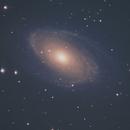 M81 and M82,                                Matthew Terrell