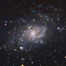 M33 Triangulum Galaxy,                                Michael Gorman