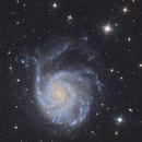 M101 Pinwheel Galaxy,                                Tsepo