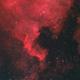 NGC 7000 North American Nebula,                                Andrew