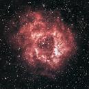 Rosette Nebula,                                Kyle Bernard