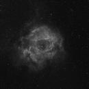 Rosette Nebula in Ha,                                Sigga