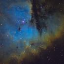 NGC 281 SHO,                                Christopher Gomez