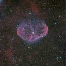 Crescent Nebula HORGB @DSW,                                Miles Zhou