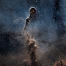 IC 1396A Elephant's Trunk Nebula,                                Aaron Freimark