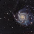 M101 - Pinwheel Galaxy,                                David Augros
