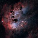IC 410 Tadpoles,                                Skywalker83