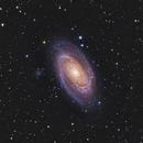 M81,                                Anna Morris