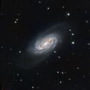 NGC 2903,                                Algorab