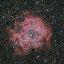 Rosetta Nebula,                                Eric MAZALEYRAT